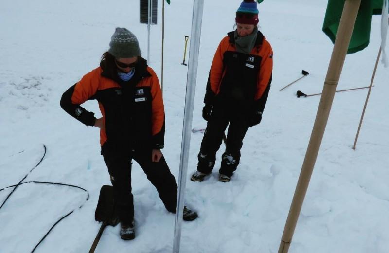 Глобальное потепление не повлияло на ледник Росса в Антарктиде