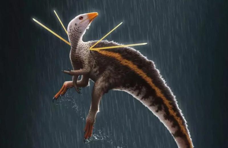 Шипы из плеч: у динозавра мелового периода нашлись странные украшения