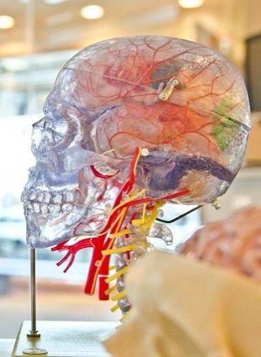 Кислородное голодание мозга: симптомы и лечение