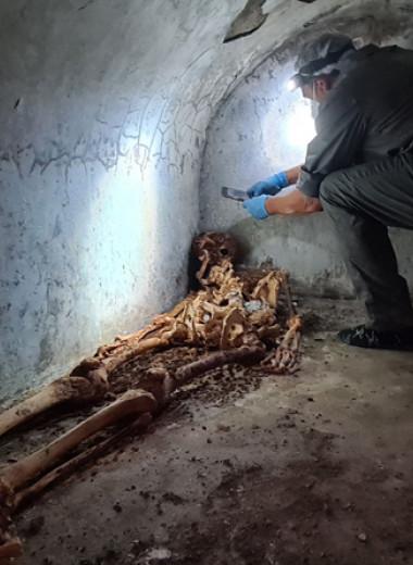 Археологи обнаружили в Помпеях гробницу с мумией