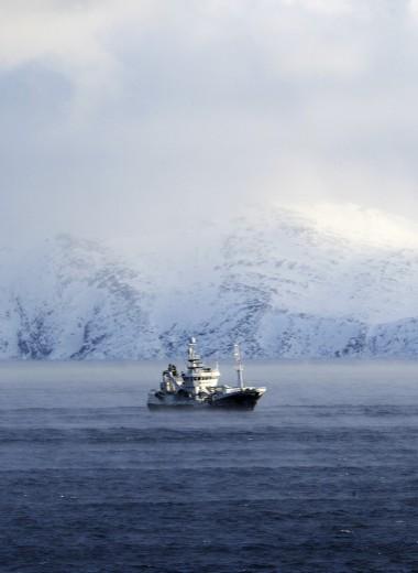 Короли морей: кому принадлежит российская рыба. Рейтинг Forbes