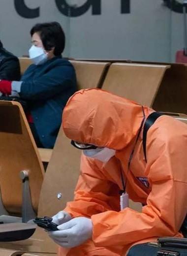 Летучие мыши ни при чем: в Китае нашли нулевую пациентку, с которой началась эпидемия