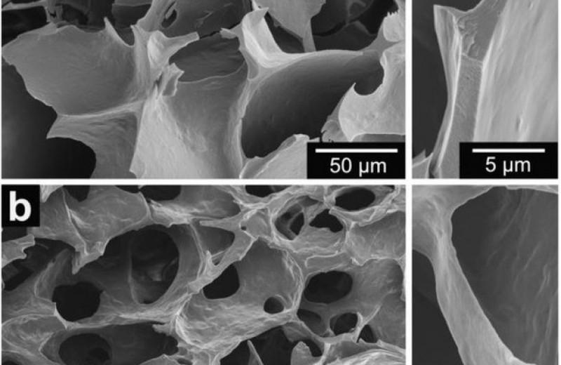 Сывороточный белок превратили в термостойкий пенопласт