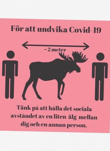 Карантина нет: почему шведы продолжают вести привычный образ жизни