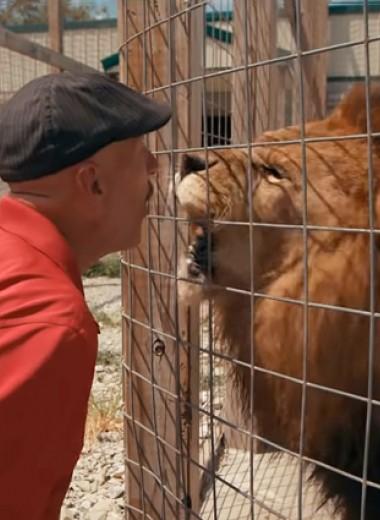 Эксперименты над людьми и издевательства над животными: документальные фильмы против новой реальности