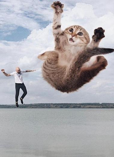 Мужской мир: старообрядец «Петя» и его живые трехметровые коты