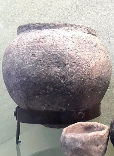Степняки начали пить молоко пять тысяч лет назад