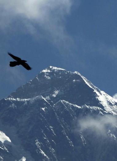 Смерть за деньги. Почему на Эвересте образовалась очередь, из-за которой гибнут альпинисты
