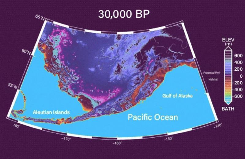 Первые поселенцы приплыли в Северную Америку на каяках вдоль островов Берингова архипелага