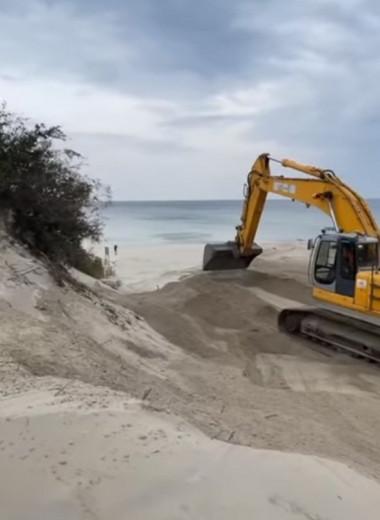 Экскаваторы уничтожают уникальные дюны в Калининградской области: видео