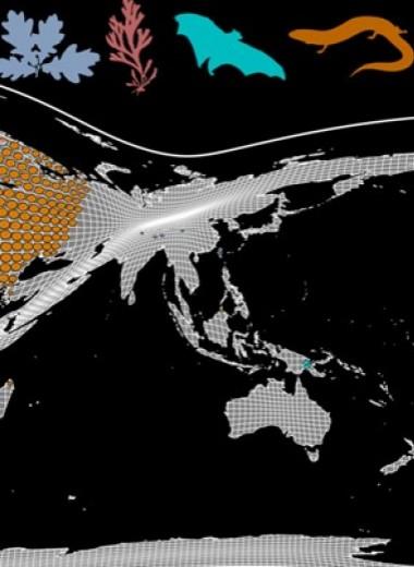 Морские организмы сместили ареалы к полюсам в шесть раз быстрее наземных