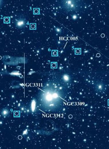 В скоплении Гидра I нашли 12 ультрадиффузных галактик