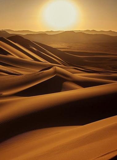 Пустыня Сахара может вновь стать зеленой – как?