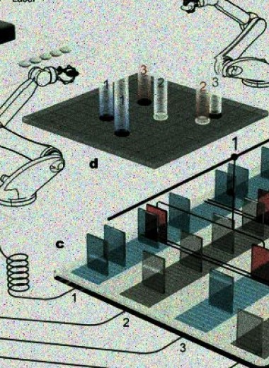 Физики придумали квантовое го