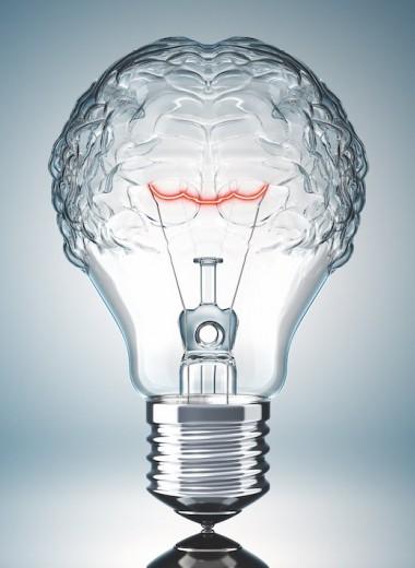 «Относись к цели как к проекту»: как думать и действовать эффективно