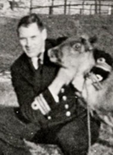 Как советские моряки в 1941-м британским подводникам олениху подарили