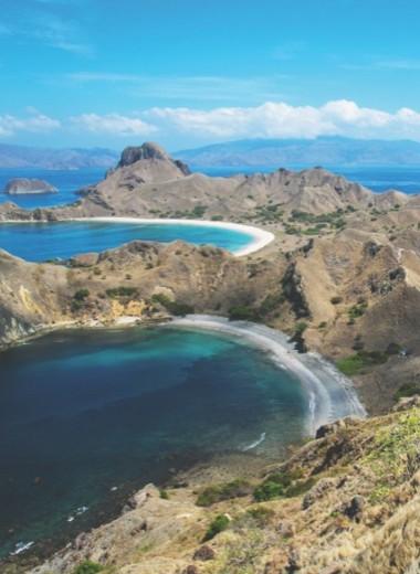Человек и дракон: репортаж с островов Индонезии