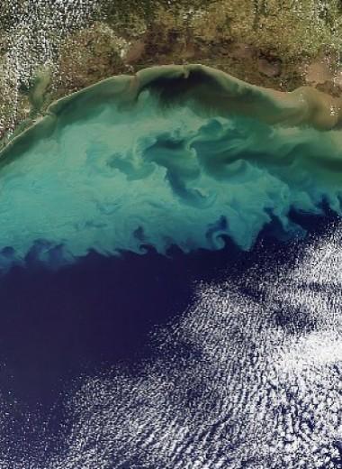 Удобрения заставили озера накопить больше углерода