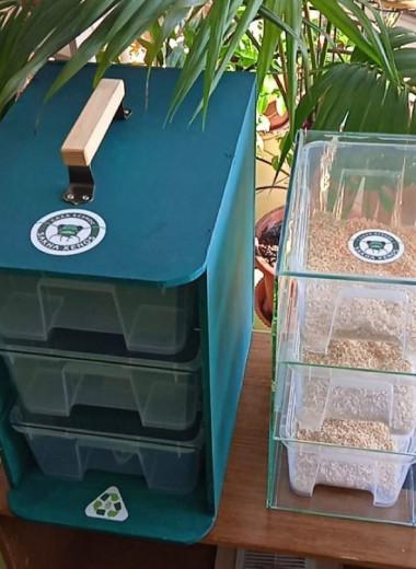 Биотехнологи из Якутии создали жучиные станции для утилизации пластика дома