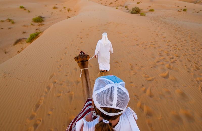 Каникулы в Абу-Даби: 8 развлечений для всей семьи