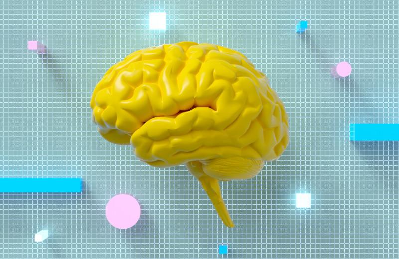Можно ли восстановить мозг после инсульта и травмы? Интервью с ученым