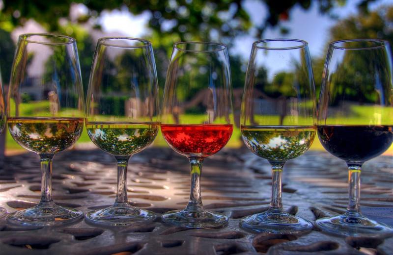 Ценник влияет на восприятие вкуса вина