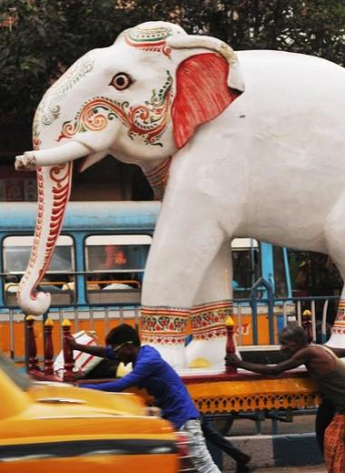 Экспансия на север: как Индия завоевывает Россию