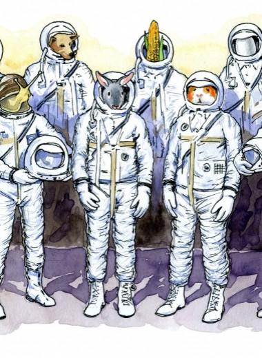 Как все запущено: 85 вещей, которые человечество сочло нужным послать в космос