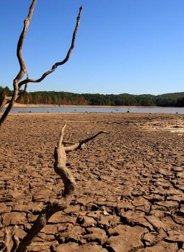 Экстремальная засуха и низкая влажность. Какая погода ждёт Землю в ближайшие 100 лет