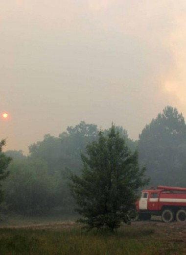 В Чернобыльской зоне отчуждения произошел пожар: видео
