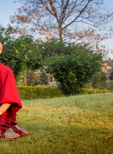 Мозг и медитация. Чем знания тибетских монахов помогут в бизнесе