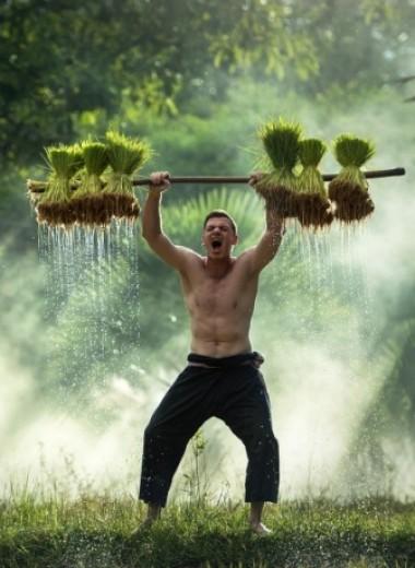 7 вещей, которые ты обязательно должен сделать в Таиланде (хватит валяться на пляже)