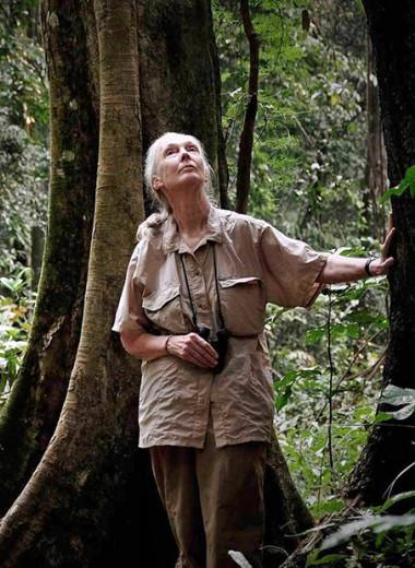 8 выдающихся современных женщин-ученых и открытия, которые изменили мир
