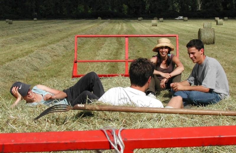 Правда ли «деревенские» продукты отвечают принципам ЗОЖ: 5 нюансов