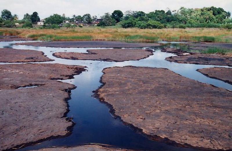 Асфальтовое озеро острова Тринидад