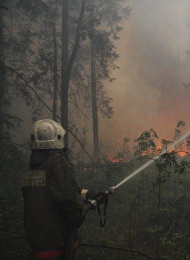 Ученые нашли способ эффективно тушить торфяные пожары минимальным количеством воды