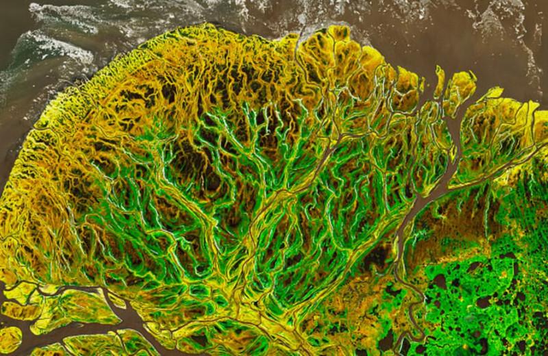 Орбитальный спутник сделал снимок дельты Юкона, от которого невозможно оторваться