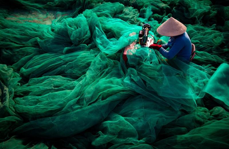 Самые запоминающиеся фото об экологических проблемах мира 2019 года