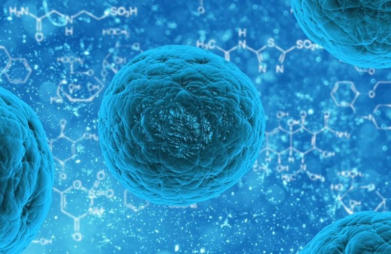 Погоня за мельчайшими организмами: как мир узнал о вирусах