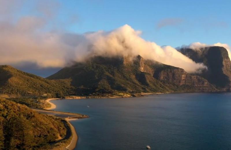 На австралийском острове начался «экологический ренессанс». Для этого пришлось истребить 300 тысяч грызунов