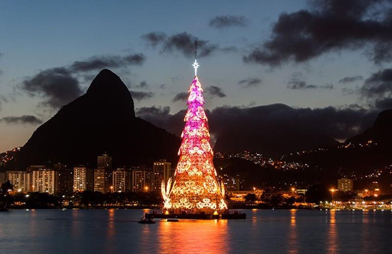 В поисках лучшей ёлки: самые высокие новогодние деревья в мире