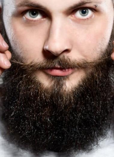 Как борода спасает от удара в челюсть: естественный щит