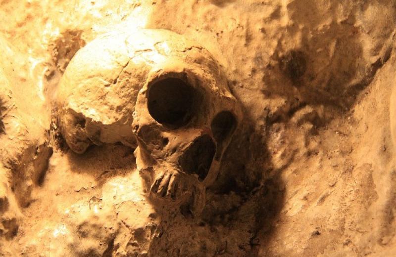 Неандертальцы вымерли в Крыму более 40 тысяч лет назад