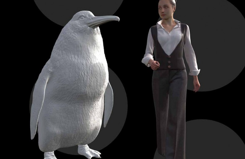 Ростом с человека! Останки монструозного пингвина нашли в Новой Зеландии
