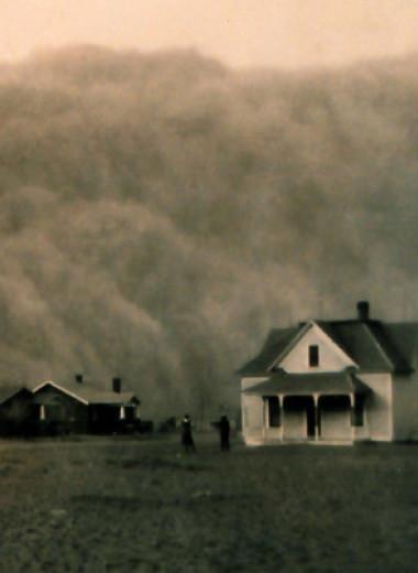 Искусственная засуха помогла экологам разрешить парадокс Пыльного котла