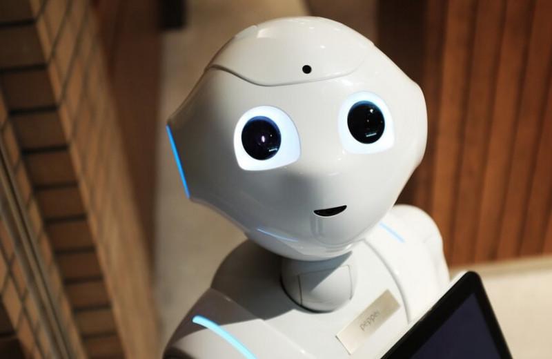 Бот расист, хам и сексист: чего еще ждать от искусственного интеллекта