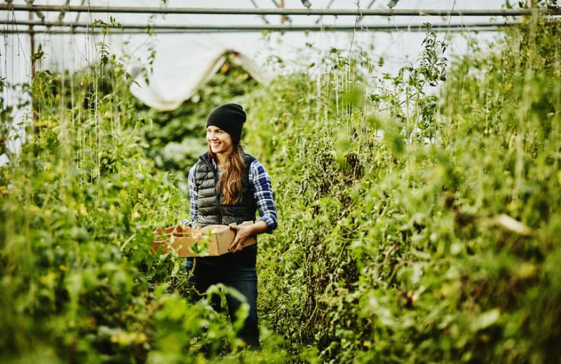 «Земля диктует свое»: истории четырех женщин, развивающих эко-фермерство в Пуэрто-Рико