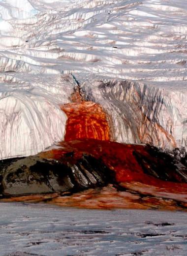 Кровавый водопад в Антарктиде и еще 5 удивительных загадок, разгаданных современной наукой