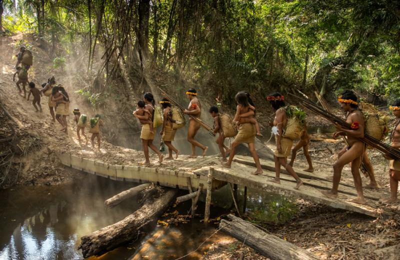 Стражи леса: неконтактные племена Амазонки (часть I, Бразилия)