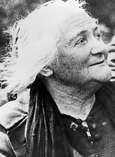 Бабушка революции: 6 фактов о Кларе Цеткин